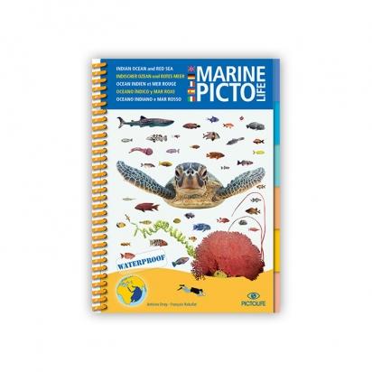 Marine PICTO LIFE - Mer Rouge Océan Indien