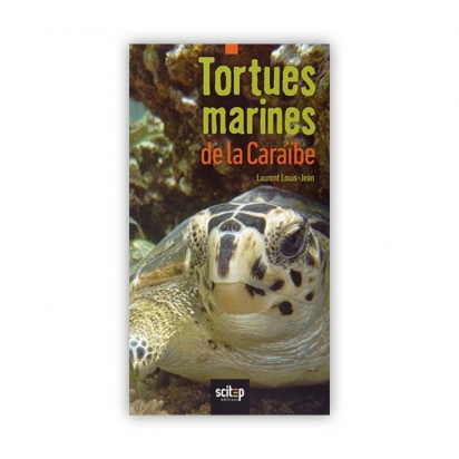 Tortues marines de la Caraïbe