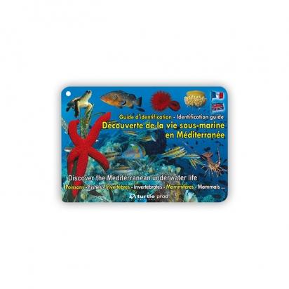 Guide d'identification - Vie sous-marine en Méditerranée