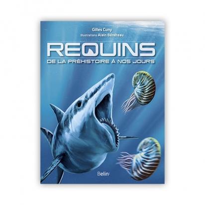 Requins, de la préhistoire à nos jours