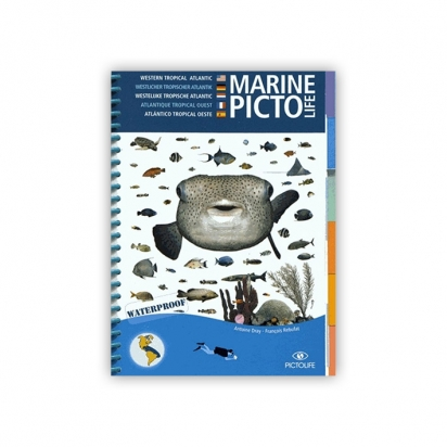 Marine PICTO LIFE - Pacifique tropical ouest