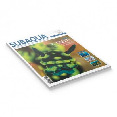 Subaqua N° 286