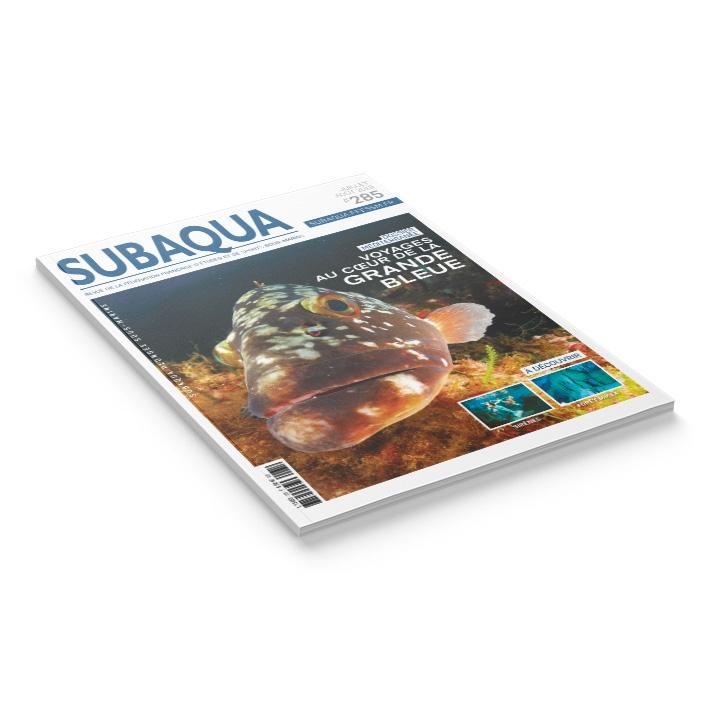 Subaqua N° 285