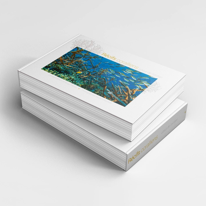 Récifs coraliens - cœur de l'océan