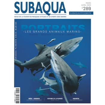 Subaqua n° 289